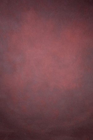 NEW! 8'x12' Savage Timeless Textures Painted Canvas Backdrops